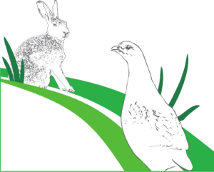 VR-Stiftung und Volksbanken unterstützen Biotop-Fonds der Jäger