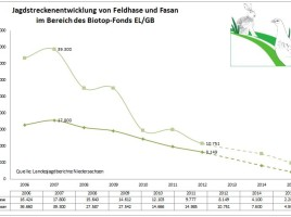 Jagdstrecken bei Fasan und Rebhuhn zw. 2007 und 2015