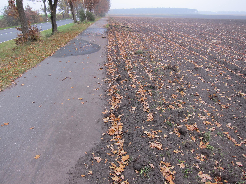 Gemeinde Esterwegen: Warnschuss an Landwirte