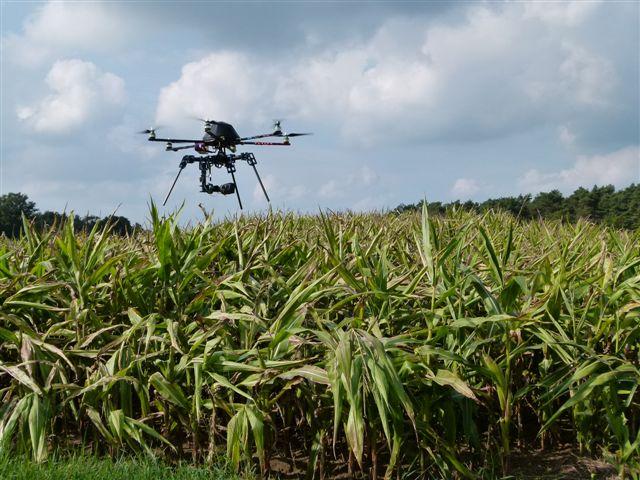 Mit Kamera-Drohne gegen grausigen Mähtod – Jäger setzen auf Technik zum Schutz von Jungtieren vor Erntemaschinen